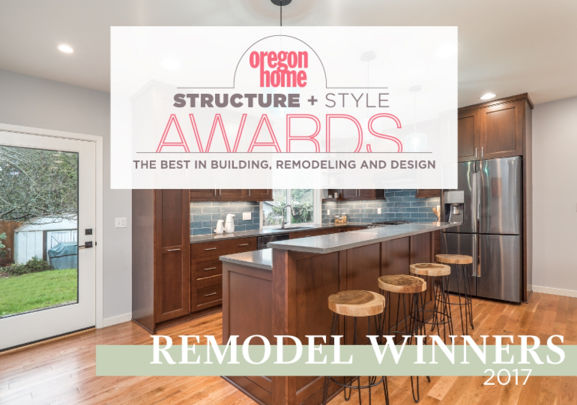 Structure + Style 2017: Remodel Winners